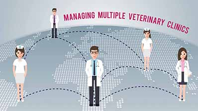 managing multiple veterinary clinics with practice management software