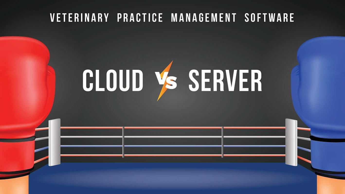 Veterinary Practice Management Software : Cloud vs Server Based PMS
