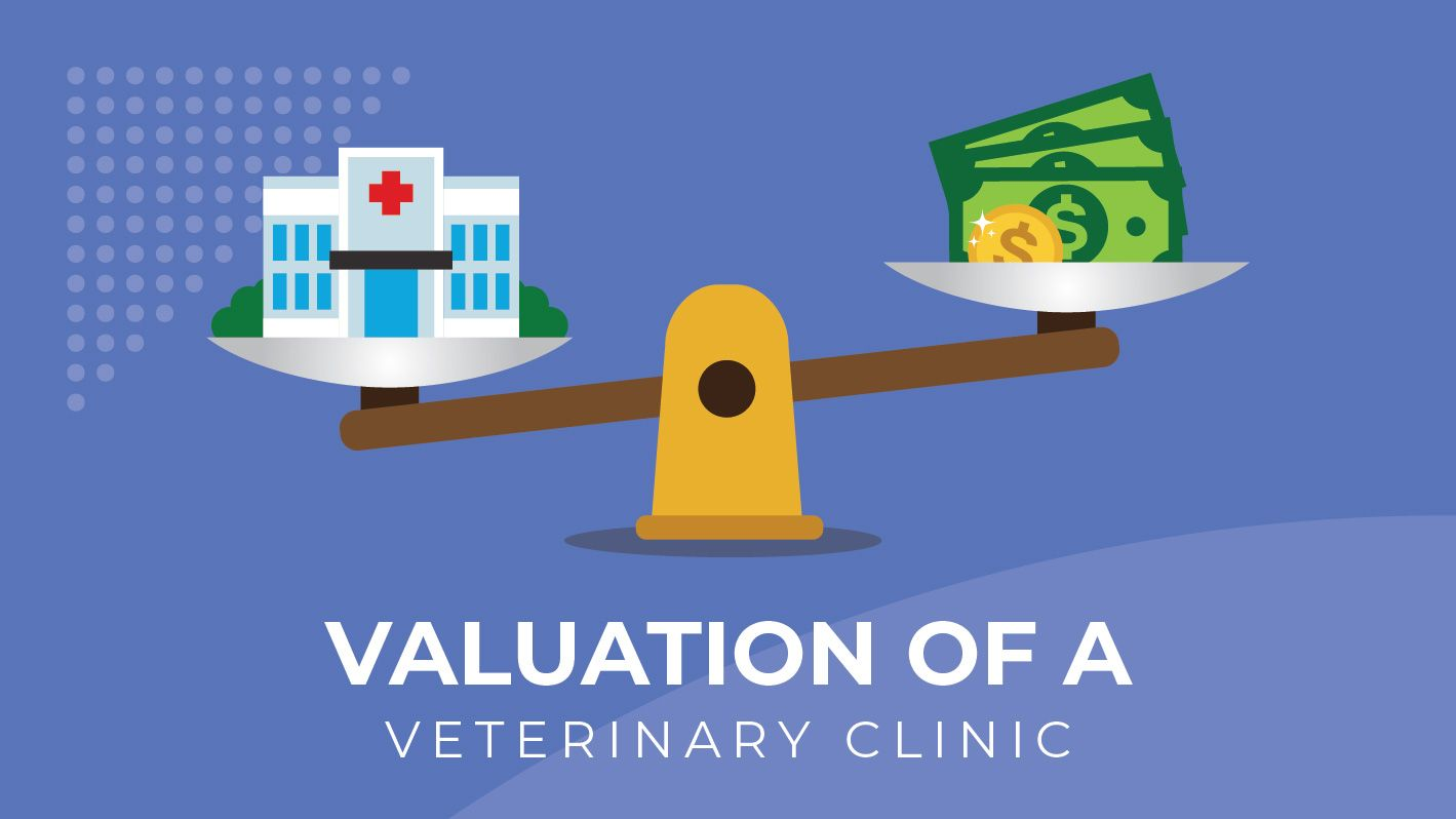 Valuation of a Veterinary Hospital